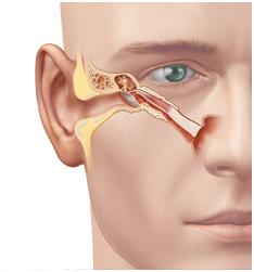 dilatación tubarica