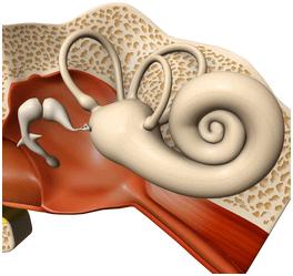 laberintectomia quirurgica